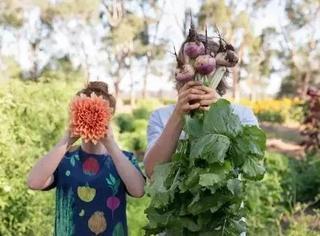 他爱上园艺,放弃家族产业,与爱人一起过最不花钱的田园生活
