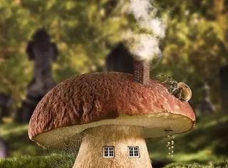 艺术家用Photoshop造小屋,想抢过来一个自己住啊!
