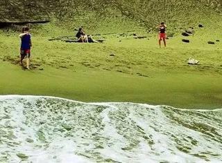 它是安以轩去年大婚的浪漫海岛,还拥有一片抹茶味海滩
