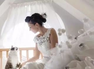 当婚纱照里混进了喵星人,温柔得不像话啊啊啊