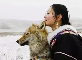 花7年拍出人与狼纪实电影,冯小刚:同样的题材,我做不过你