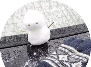 有一种爆笑,叫当南方人看到了雪.......
