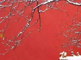 紫禁城下雪了