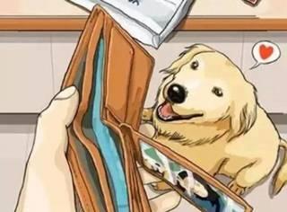 分享丨自从养了狗,几多欢乐几多愁
