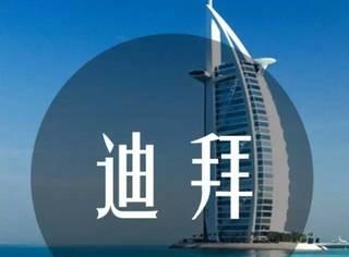 如果有一天你老无所依,你会去迪拜捡垃圾吗?